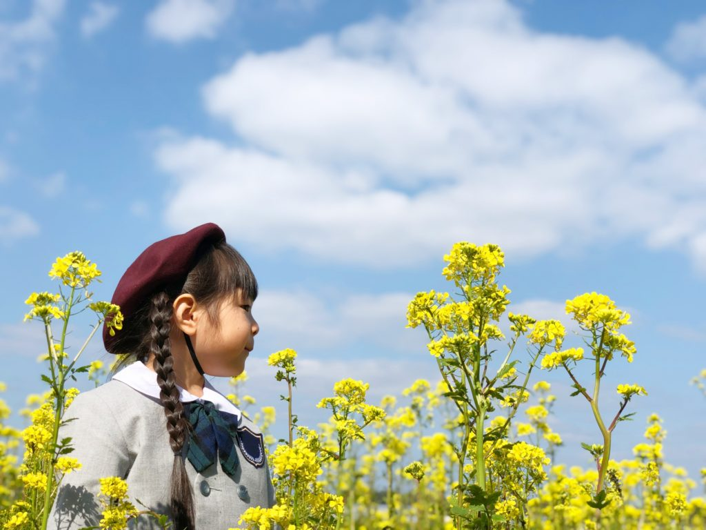 幼稚園生×春
